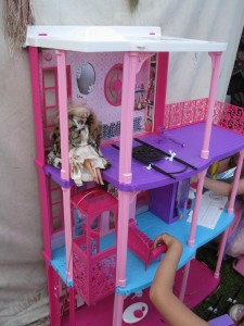 Pamflet Barbie visits the doll house at the Rubbish Tent. There was a lot of this kind of thing